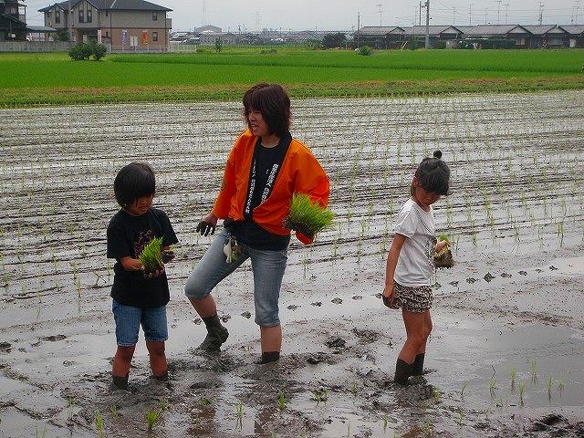 子ども農業体験003