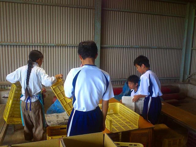 子ども農業体験004
